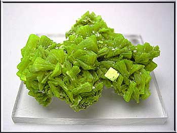 Autunite, 1.5 x 2.8 x 3.9 cm.  Nossa Senhora do Assunçao mine,  Aldeia Nova, near Ferreira de Aves, Viseu district, Portugal.  Edelweiss Minerals specimen; Felix Garcia Garcia photo