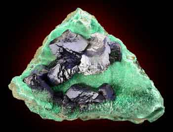 Azurite, Guichi, Anhui, China. 7.3 cm; specimen and photo, Dan Weinrich